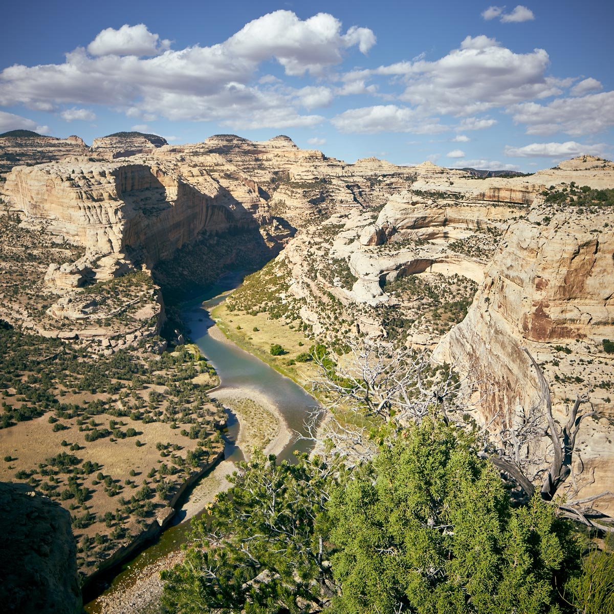 Dino-Yampa-Upstream-of-Wagon-Wheel-Point-Square-9-16-16-Web